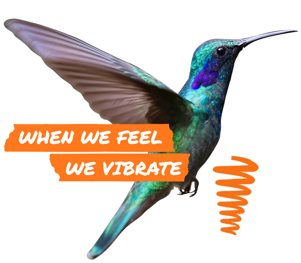 When We Feel We Vibrate